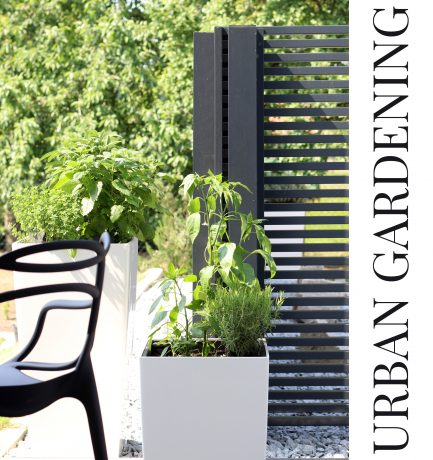 Grünes Glück  | Urban Gardening