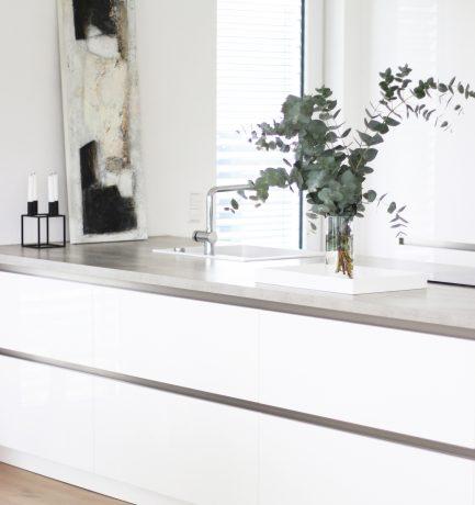 Eukalyptus im Trend   Küchen-Highlights