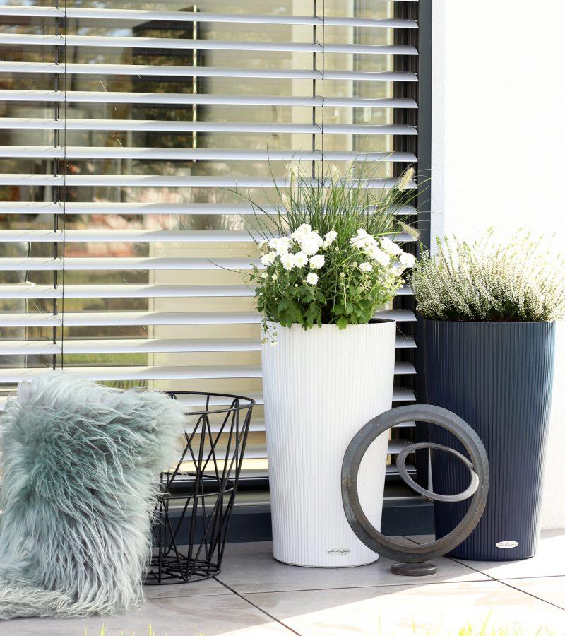 Neuer Flair im Gartenbereich | Coconut- und Blueberry Nuancen